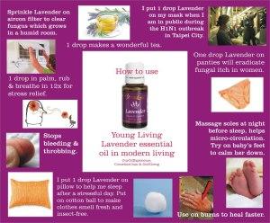 lavenderuses